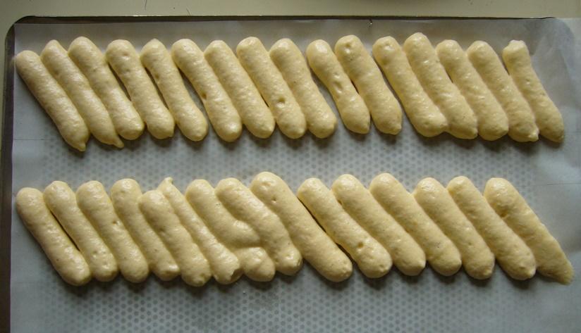 16 biscuit