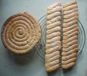 19 biscuits