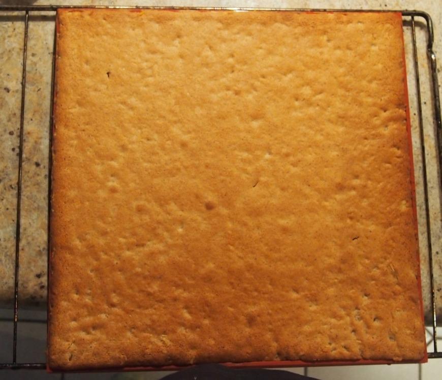 la plaque de pain d'épices obtenue (32*32cm ici)