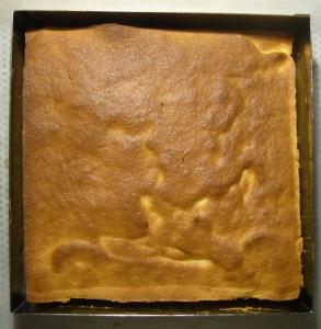 08 biscuit