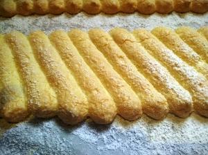 03 biscuit