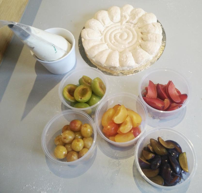 23-fruits