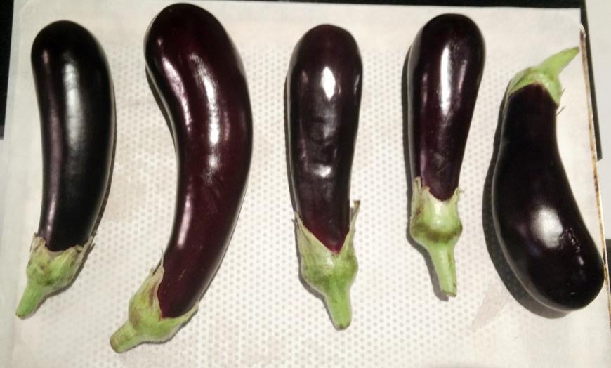 04-aubergines